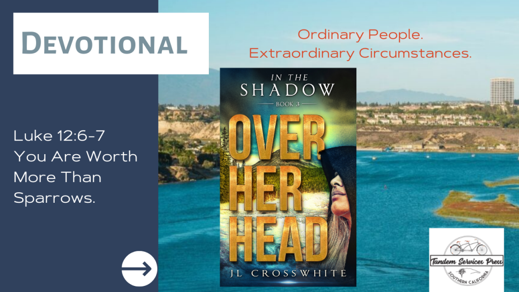 Devotional: You are worth more than sparrows. Book cover of Over Her Head. by JL Crosswhite